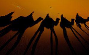 Los Reyes Magos te traen los botes de Arabet